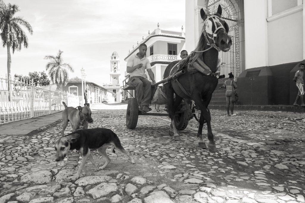 Cuba-2014b17.JPG